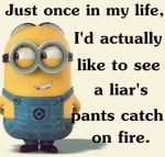 pants on fire